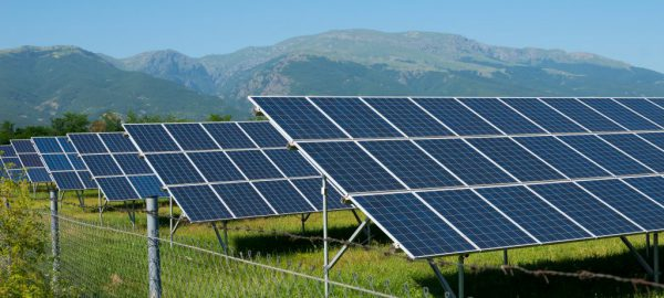 Misuse Of Technology. Farmers Are Planting Solar Panels. Solar P